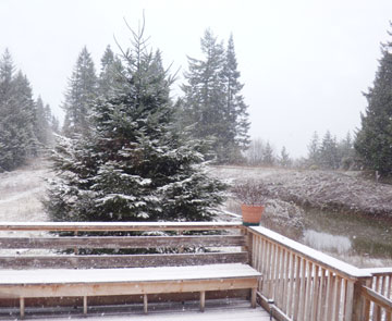 First Snow of the Year