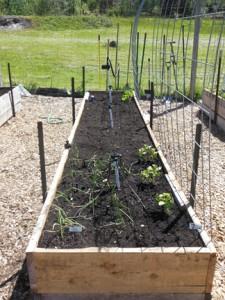 garden-bed-5